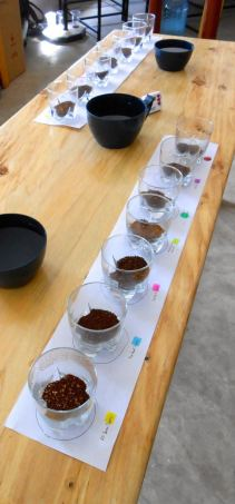 Farmers, Taste Your Coffee!
